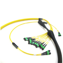 MTP® / MPO 干线布线组件