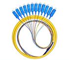 12芯12色SC/UPC单模束状0.9mm尾纤