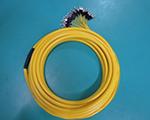 单模FC/UPC 24芯 分支 2.0mm跳线 电信级标准