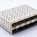 SFP 2X6 带导光棒 15U脚距内侧两灯孔